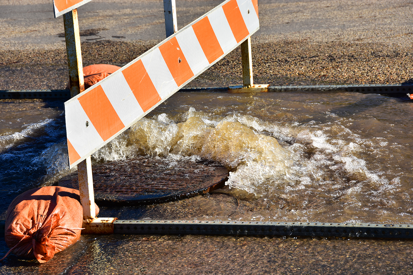 Stormwater Pollution Prevention Plans (SWPPP)